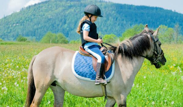 Разходка с кон
